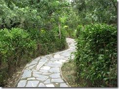 Pathway_4